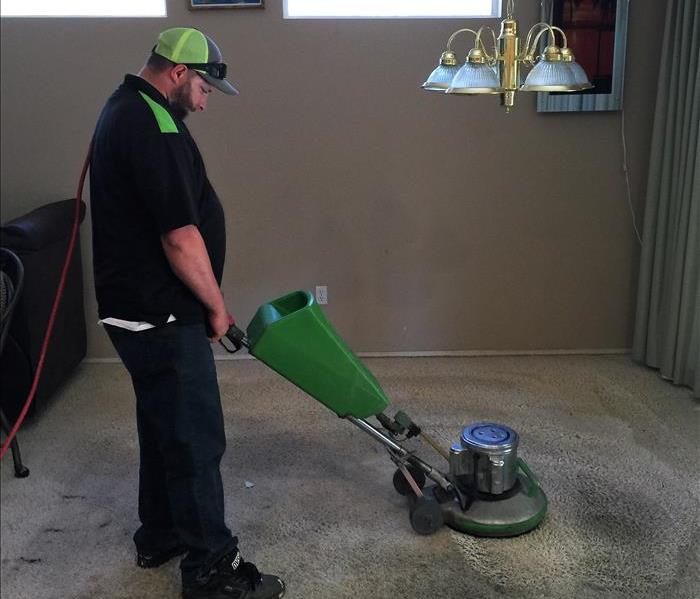 Roto Cleaning Carpet