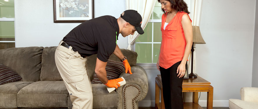 Sun City, AZ carpet upholstery cleaning